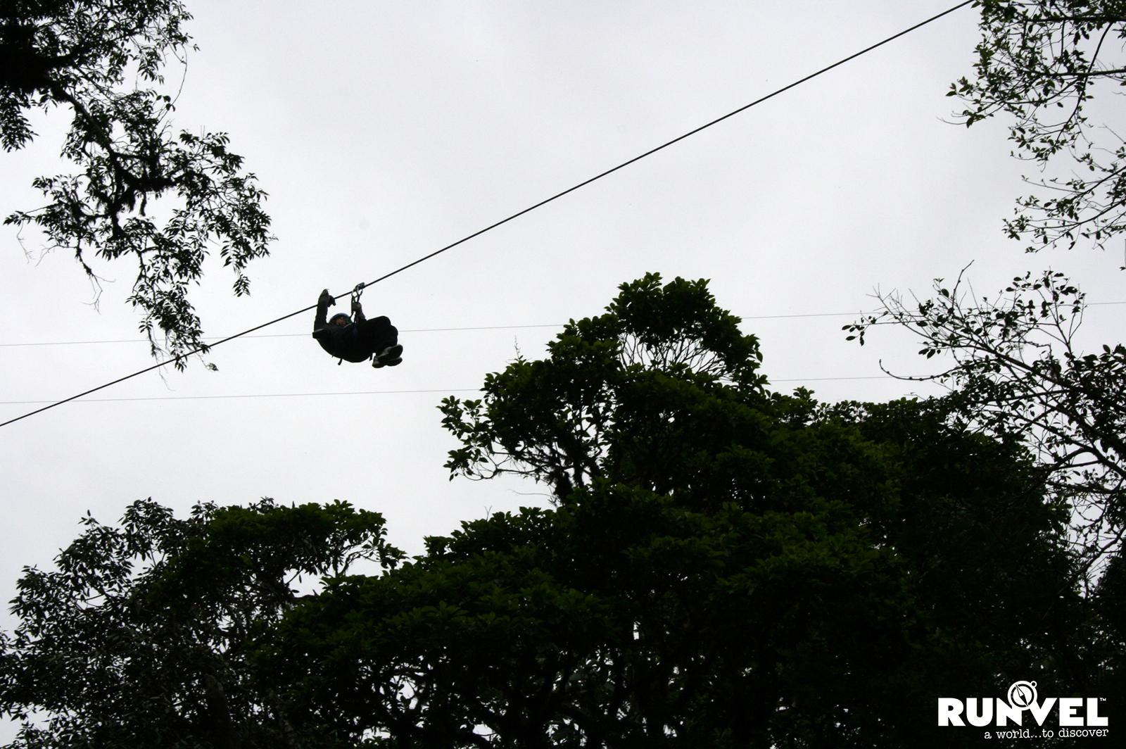 Monteverde (75)