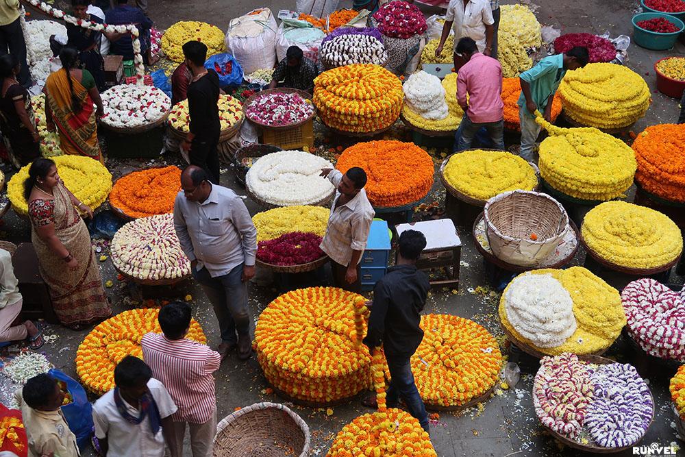 Καλή dating μέρη στο Μπανγκαλόρ